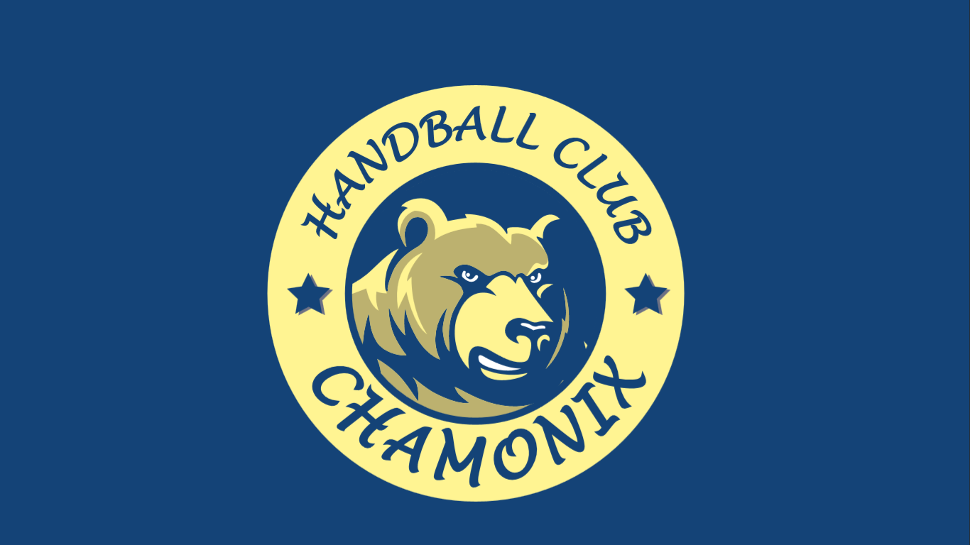 Section HANDBALL logo